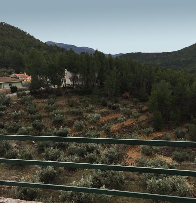 Yeste Albacete Finca 350000